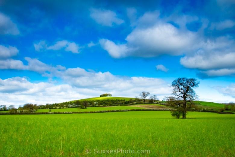 barrow hill hasfield