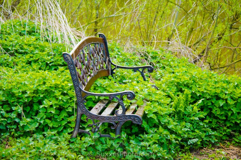 severn stinging chair
