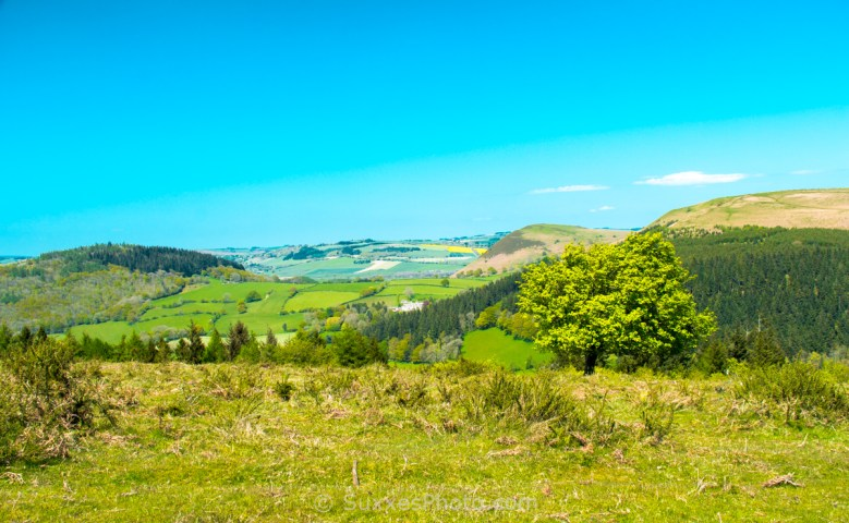 hergest ridge hills view