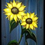 sunflowerSR2016-3