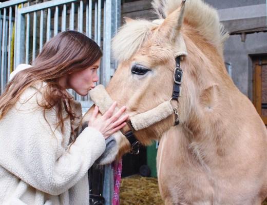 paardrijden goed
