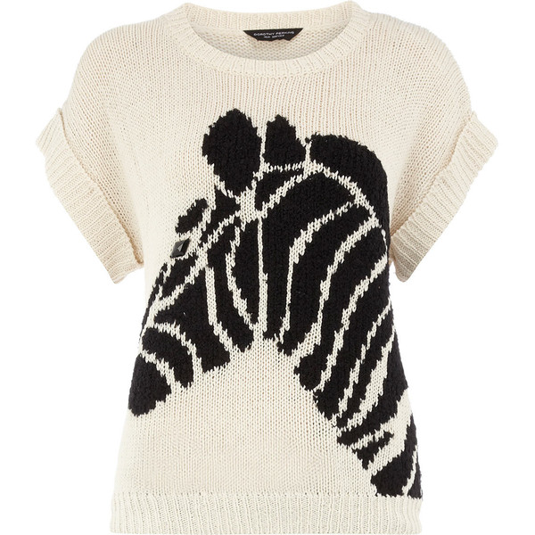 Dorothy Perkins sweater