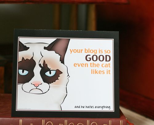 Funny grumpy cat blog greeting card suzanne carillo