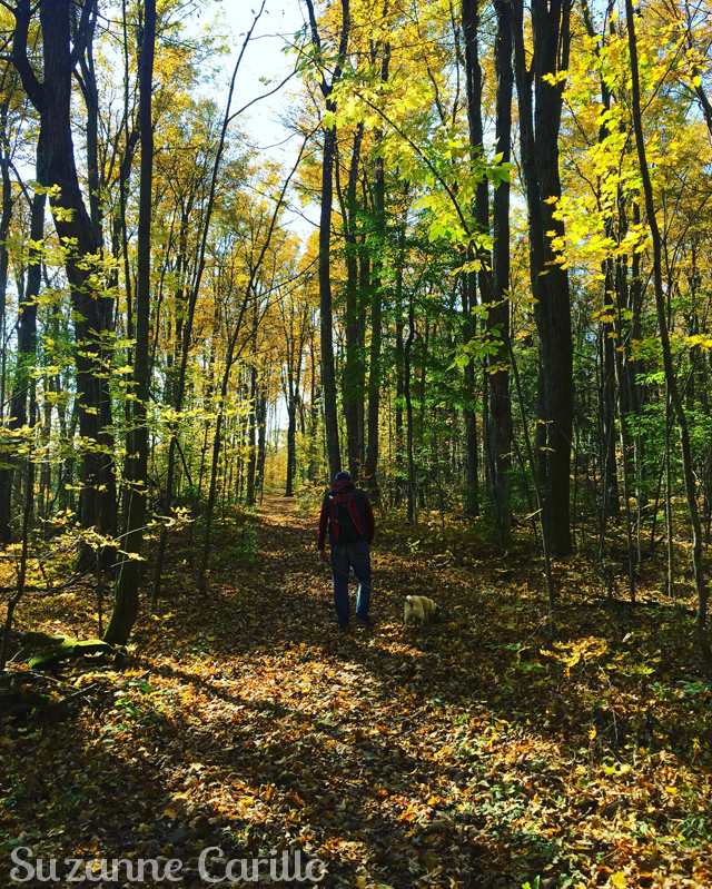hiking ontario suzanne carillo