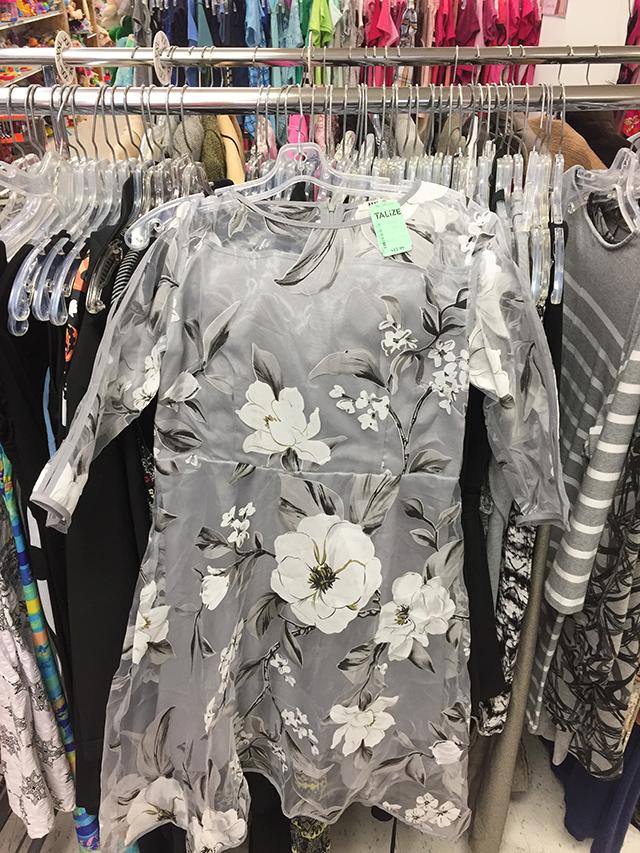 The dress that stalks me