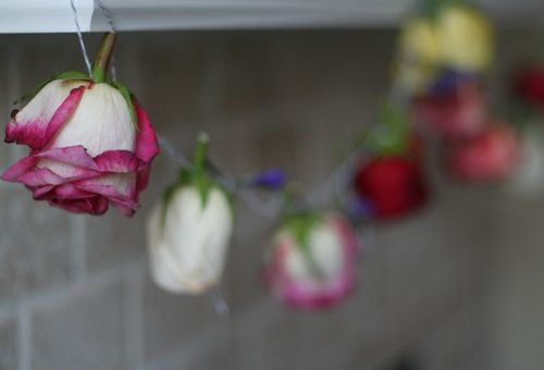 Diy handmade fresh rose garland