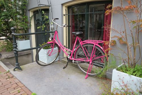 Pink bike amsterdam suzanne carillo style files
