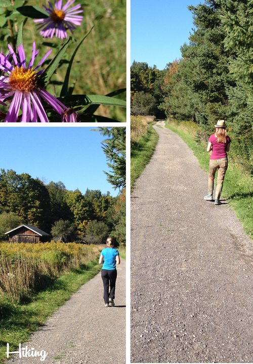 Hiking dundas ontario suzanne carillo