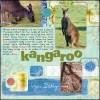 Kangaroo_1