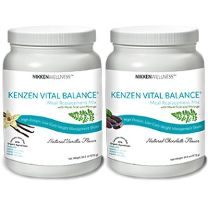 Nikken Protein weight management shake organic moringa kosher non-gmo MCT monk fruit