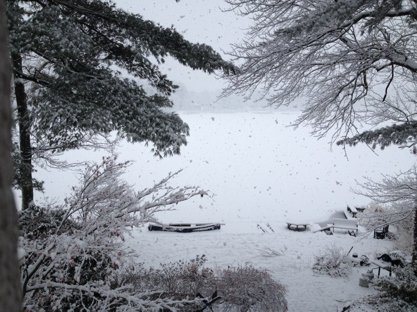It's not really looking like a White Christmas this year, so this photo of my backyard will have to do.
