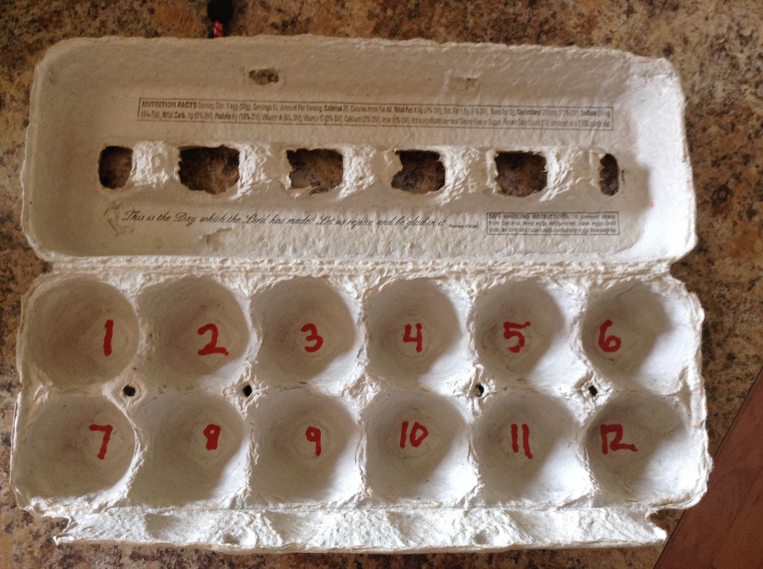 Suzanne Shares Diy Egg Carton Multiplication Or Skip