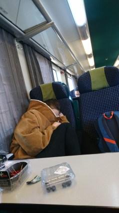 Hibernating on the train to get some sleep