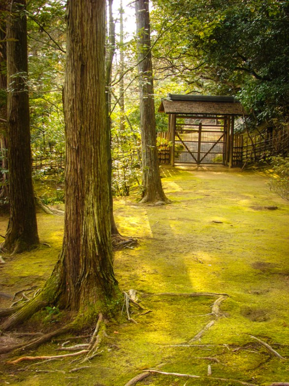 ancient temple grounds, Kyoto