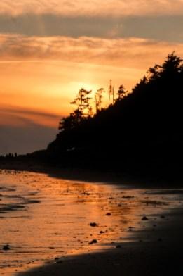 Coastal Oregon at sunset