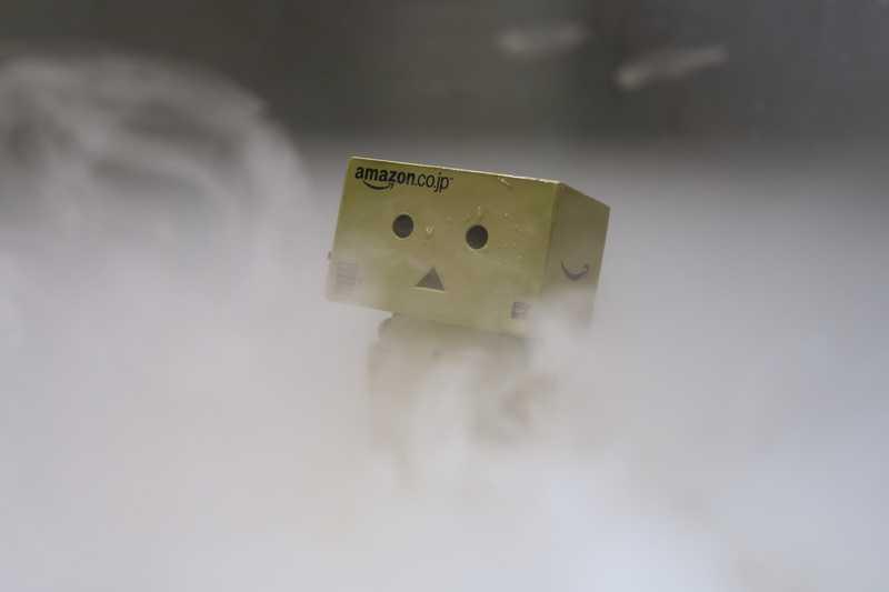 ダンボーが霧の中でさまよっている様子