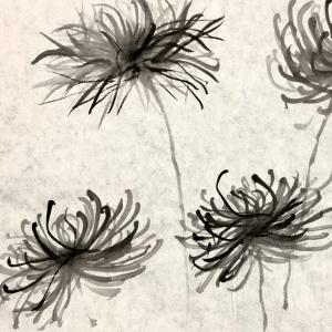 cursocrisantemo1