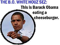 250wde_bo-whitehouselie-3