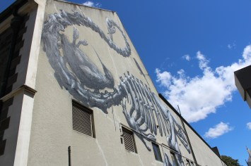 Street art by ROA in Christchurch