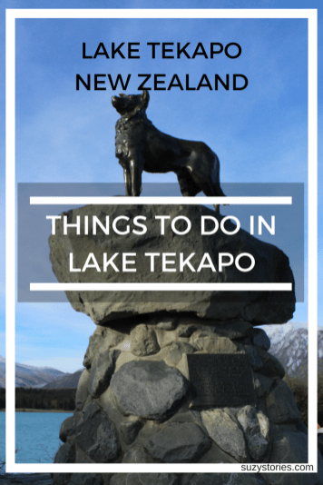 Bronze Sheepdog: Things to do in Lake Tekapo - Plan a New Zealand road trip