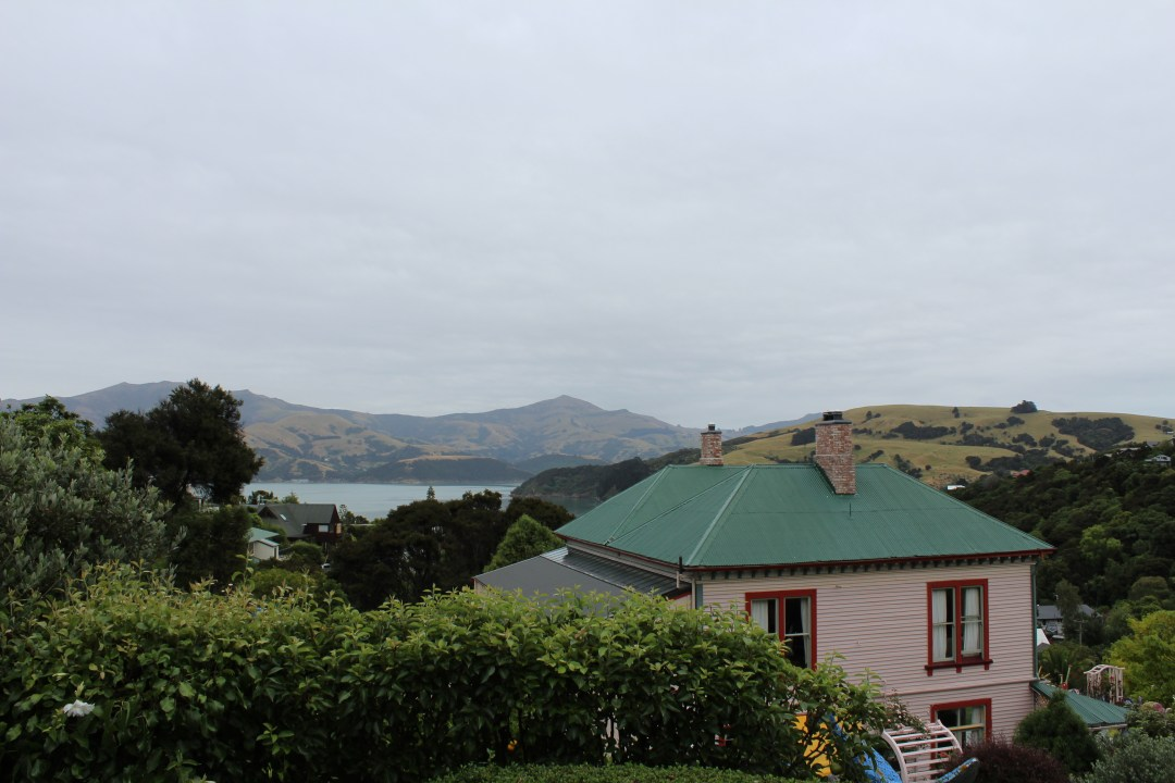 Hill views overlooking Banks Peninsula from Giant's House, Christchurch New Zealand
