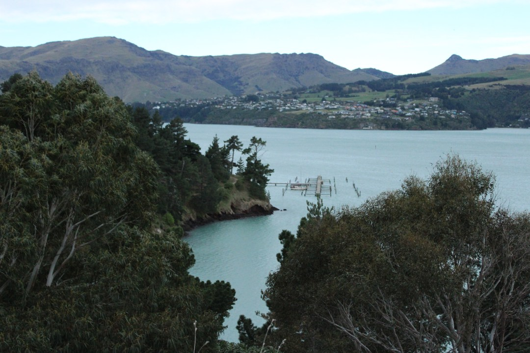 Coastal views overlooking hidden bay from Lyttelton, New Zealand