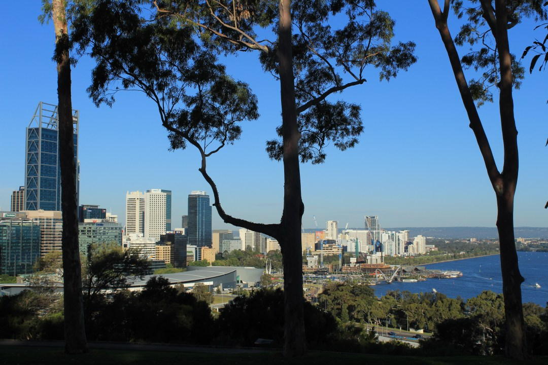Best things to do in Perth - one day itinerary. Visit King's Park for city views of Perth