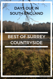 Surrey Countryside Days Out in Autumn: Best of The Surrey Countryside in Horsell Common