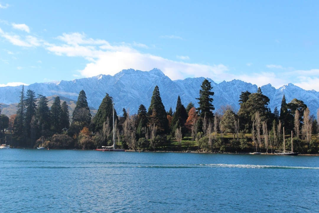 mountains stand tall behind a row of autumnal trees with a still lake in the foreground