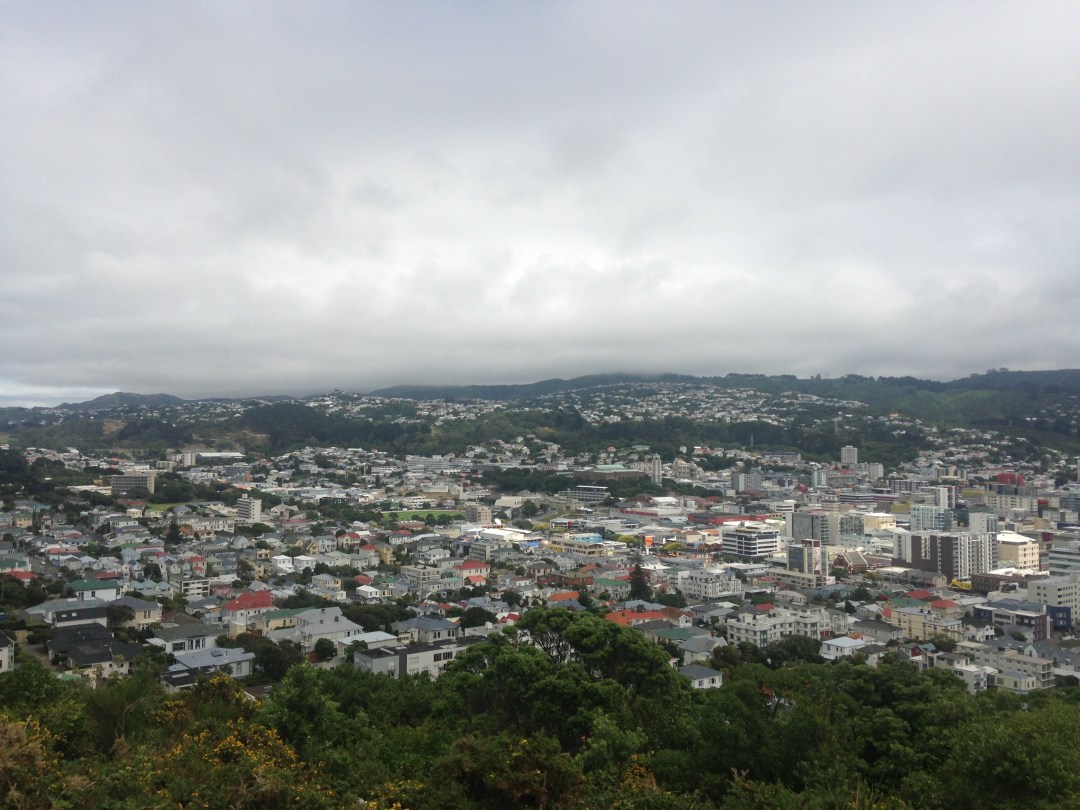 A cloudy sky covers the city of Wellington