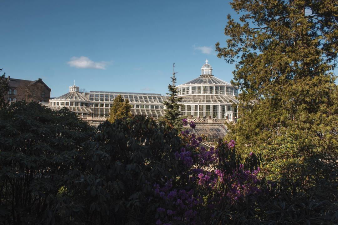 view of glasshouse in Botanical Gardens Copenhagen through trees
