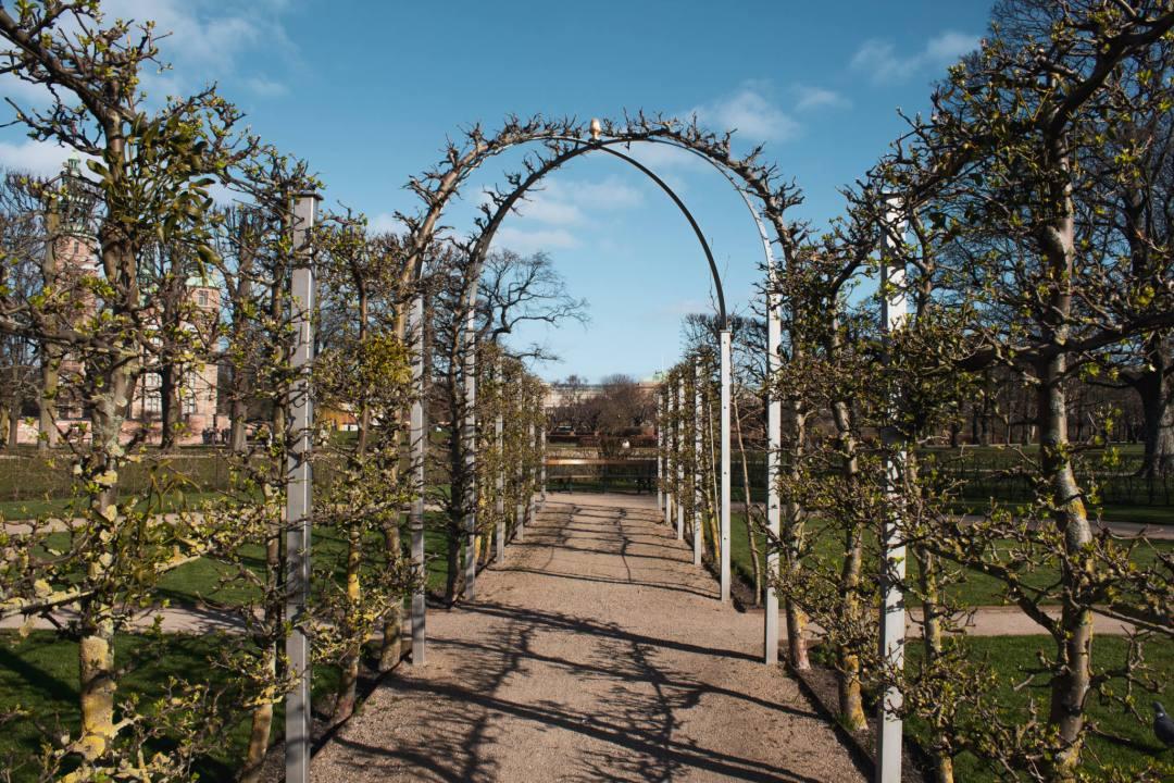 Garden avenue in King's Garden Copenhagen