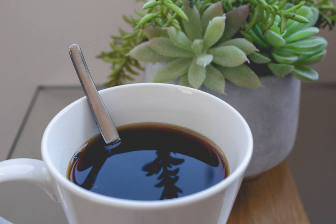 coffee in mug with plant reflection