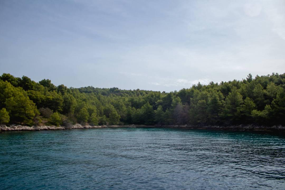 treelined cove of brac island croatia
