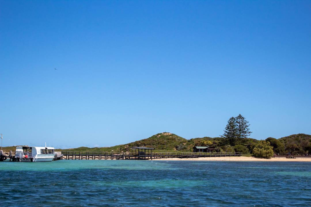 penguin island jetty