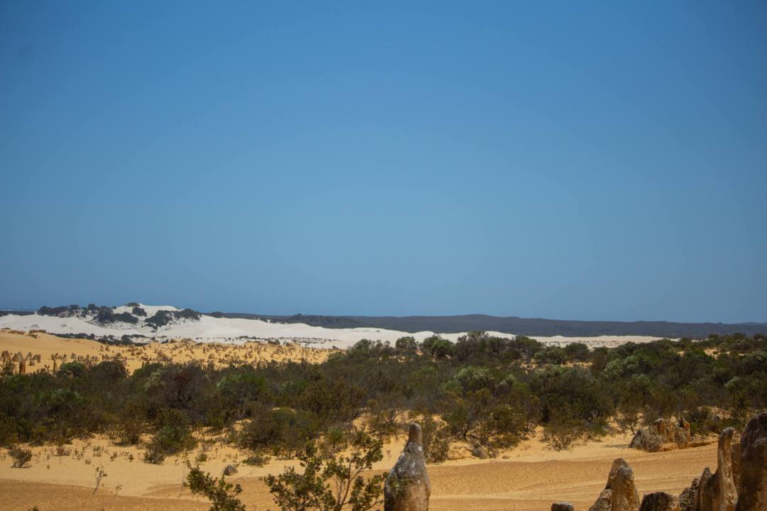 view over the pinnacles desert and sand dunes