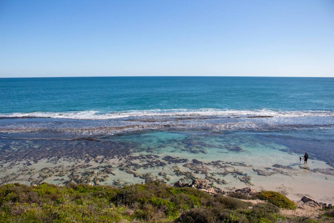 View overlooking Yanchep Lagoon as father and child paddle in water