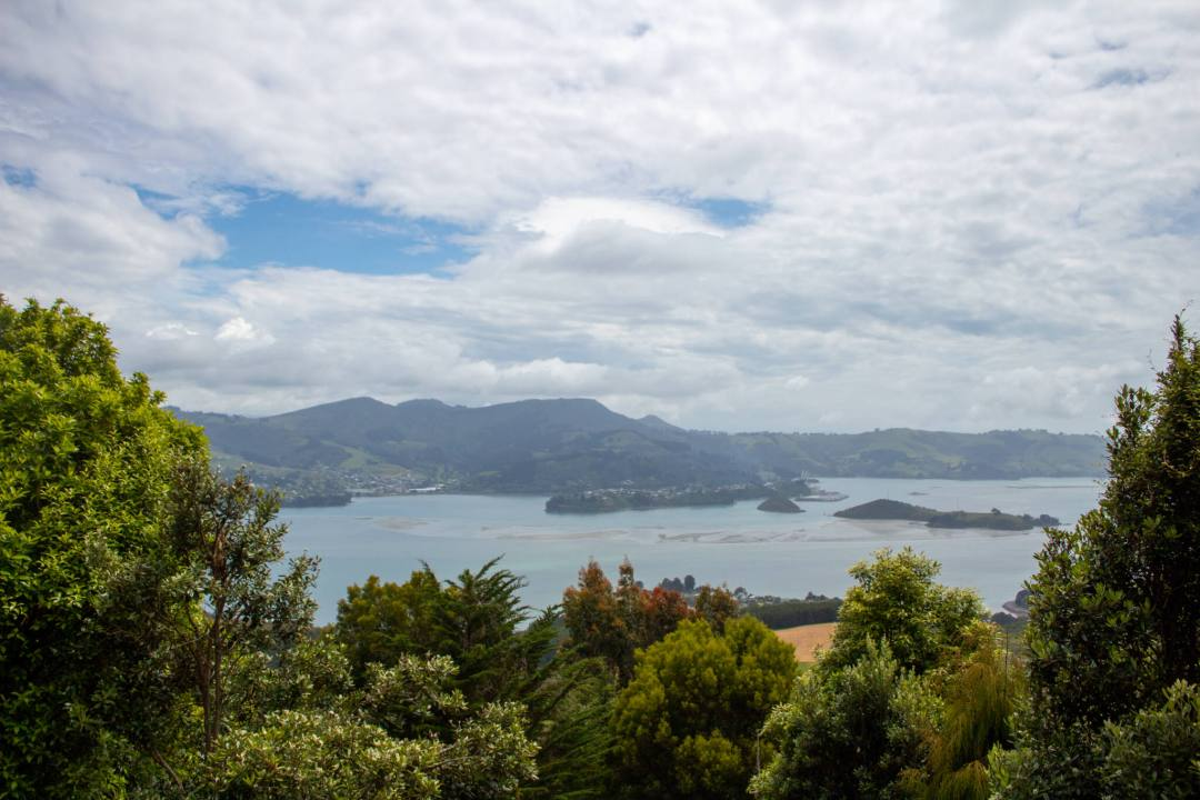 View over Otago coastline from Larnach Castle