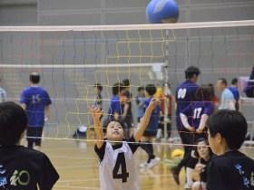 一社)静岡県バレーボール協会 |...