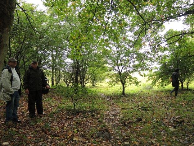 Løvskov med eg bøg og ahorn.Tage Helmuth og Tina Foto: Hanne Petra