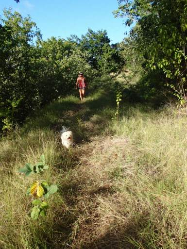 Hiking the ridge between Benures and the Bight
