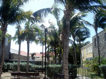 Palms were magnificent