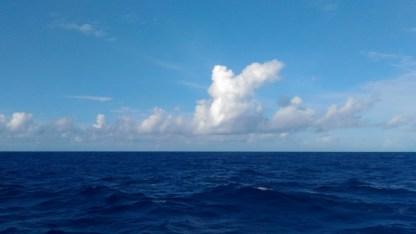A whole lotta whole lotta ocean blue