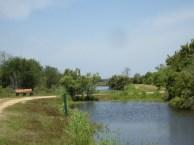 Egans Creek Greenway