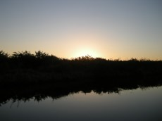 sunrise, Moore Haven canal
