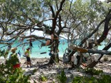 Signing Tree, Allans-Pensacola
