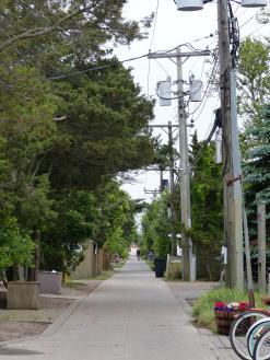 back road in Kismet, Fire Island