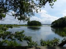 view to Smith Cove, Mashomack Preserve