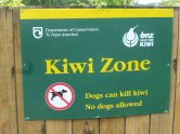 Sign for kiwis and watch your dog.