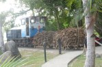 Two Cars - Loaded with sugar cane